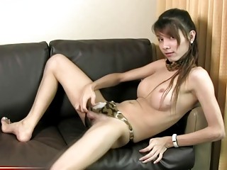 Cute tranny strips off her clothes before showering